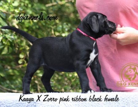 7) Pink Ribbon, Black Female